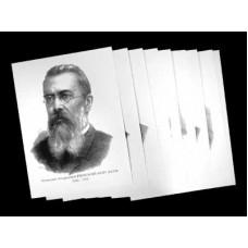 Портреты композиторов (35 шт, ф А3)