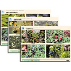 Комплект таблиц по ботанике раздат.