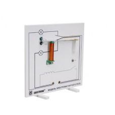 Модель электромагнитного реле (дем.)